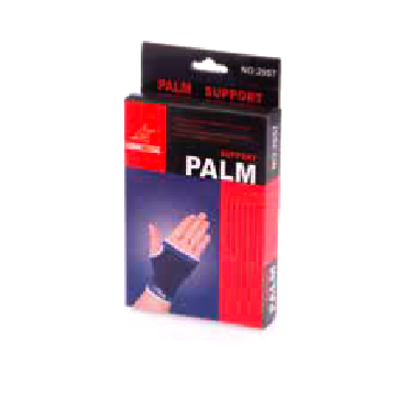 palm-support-01